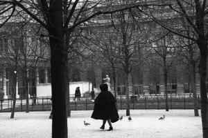 Paris Park (s)